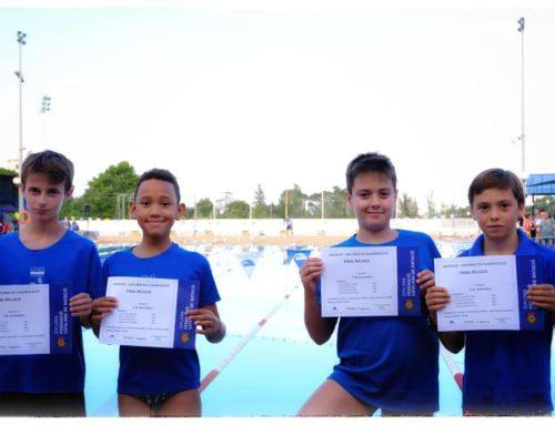 Destacada participació dels petits de la secció de natació a la Final de Relleus