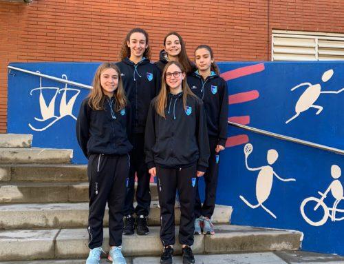 Cinc nedadores d'artística, convocades per la FCN