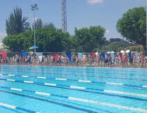 74.260 metres nedats per l'esclerosi múltiple